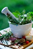 Fresh herbs in the mortar - healthy food, alternative medicine