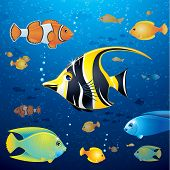Underwater Background with Colorful Tropical Fishes. Vector