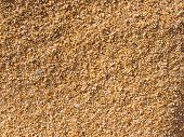 Multicolored Sand Texture