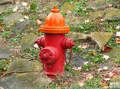 Big Red Fire Hydrant And Stone