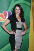 LOS ANGELES - JUL 27:  Lauren Graham at the NBC TCA Summer Press Tour 2013 at the Beverly Hilton Hotel on July 27, 2013 in Beverly Hills, CA
