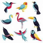 Vector Set Of Design Elements - Birds Signs