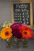 Milk bottle flower pots