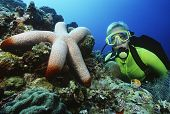 Underwater shoot of a female scuba diver watching large starfish