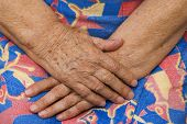 Hands Of The Grandmother