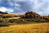 Rural Landscape Farm