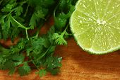 Picante Salsa Ingredients of Lime and Cilantro