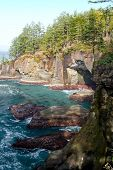 Cape Flattery Rocks And Caves