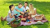 Friends Enjoying A Healthy Picnic