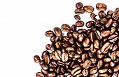 Brown Roasted Coffee Beans Isolated On White Background.  Arabic Roasted  Coffee Ingredient.  Fragra