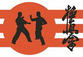 pic of karate-do  - two men are engaged in karate on a red background - JPG