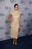 Cara Santana at the TNT 25th Anniversary Party, Beverly Hilton Hotel, Beverly Hills, CA 07-24-13