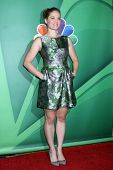 Erika Christensen at the NBC Press Tour, Beverly Hilton, Beverly Hills, CA 07-27-13