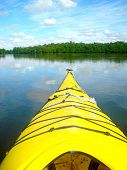 Kayak in Everglades