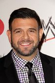 Adam Richman at Superstars for Hope honoring Make-A-Wish, Beverly Hills Hotel, Beverly Hills, CA 08-15-13