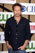 David Duchovny at the CBS, Showtime, CW 2013 TCA Summer Stars Party, Beverly Hilton Hotel, Beverly Hills, CA 07-29-13