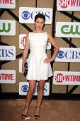 Cobie Smulders at the CBS, Showtime, CW 2013 TCA Summer Stars Party, Beverly Hilton Hotel, Beverly H