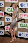 Caitlin Fitzgerald at the CBS, Showtime, CW 2013 TCA Summer Stars Party, Beverly Hilton Hotel, Bever