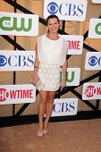 Melissa Claire Egan at the CBS, Showtime, CW 2013 TCA Summer Stars Party, Beverly Hilton Hotel, Beve