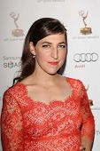 Mayim Bialik at the 65th Annual Emmy Awards Performers Nominee Reception, Pacific Design Center, Wes