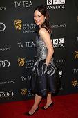 Crystal Reed at the BAFTA Los Angeles TV Tea 2013, SLS Hotel, Beverly Hills, CA 09-21-13