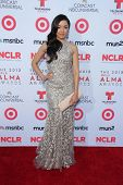 Aimee Garcia at the 2013 NCLR ALMA Awards Arrivals, Pasadena Civic Auditorium, Pasadena, CA 09-27-13