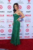 Maria Canals-Barrera at the 2013 NCLR ALMA Awards Arrivals, Pasadena Civic Auditorium, Pasadena, CA