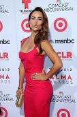 Zulay Henao at the 2013 NCLR ALMA Awards Arrivals, Pasadena Civic Auditorium, Pasadena, CA 09-27-13
