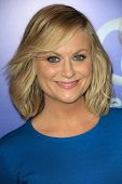 Amy Poehler at Variety's 5th Annual Power of Women, Beverly Wilshire, Beverly Hills, CA 10-04-13