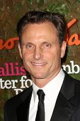 Tony Goldwyn at the Wallis Annenberg Center For The Performing Arts Inaugural Gala, Wallis Annenberg Center For The Performing Arts, Beverly Hills, CA 10-17-13