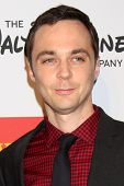 Jim Parsons at the 2013 GLSEN Awards, Beverly Hills Hotel, Beverly Hills, CA 10-18-13