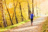 foto of ponytail  - Active and sporty woman runner is exercising in colorful autumn nature - JPG