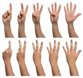 Set of counting hands isolated on white