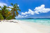 Beautiful tropical beach with palm trees, white sand, turquoise ocean water and blue sky at Tortola,
