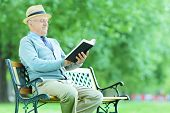 Senior gentleman reading a book in park seated on bench