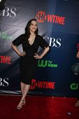 LOS ANGELES - JUL 17:  Kat Dennings at the CBS TCA July 2014 Party at the Pacific Design Center on J