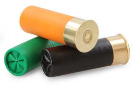 picture of shotgun  - shotgun cartridges  - JPG
