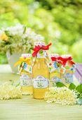 image of elderflower  - Bottles with elderflower syrup in the garden - JPG