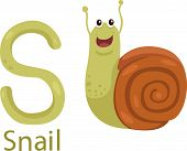 Illustrator of S with snail