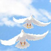 foto of ring-dove  - Illustration of doves with wedding rings in the sky - JPG