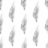 Peacock feather seamless pattern on the background