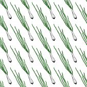 Vector seamless background with green onion.
