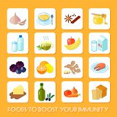 Healthy Food Icons Flat
