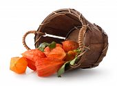 Physalis in a basket