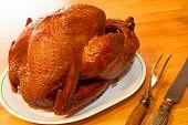 Succulent Turkey Dinner