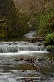 River in Saline