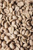 Columbia Coffee Green Bean