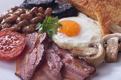 Full english breakfast with fried egg, bacon, mushrooms, sausage and black pudding