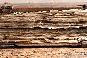 Macro view on the grungy pages of a 300 years old ancient book