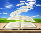 Open book bible and pages flying into skies
